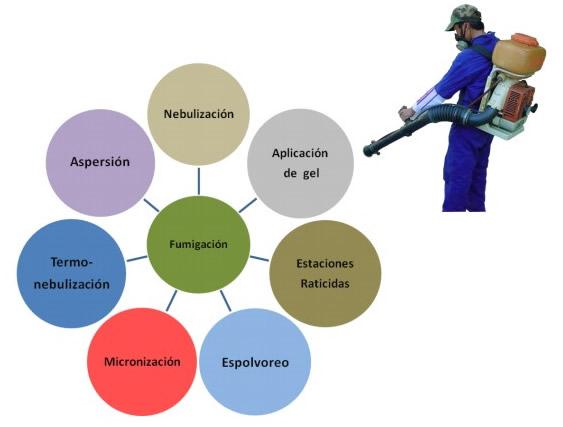 fumigacion-merida-ecotap