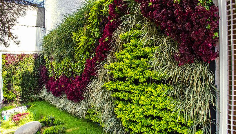 Jardines verticales en m rida ecotap jardiner a y for Jardines verdes verticales